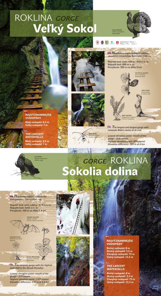 J_velky_sokol+sokolia